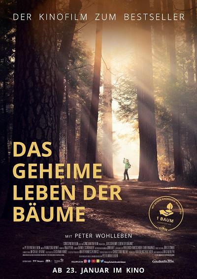 Hauptplakat Das geheime Leben der Bäume